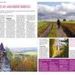 thumbnail of 117 weris-pdf