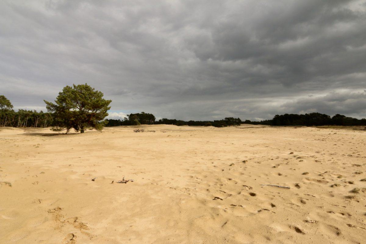 Lunteren – Wekeromse Zand