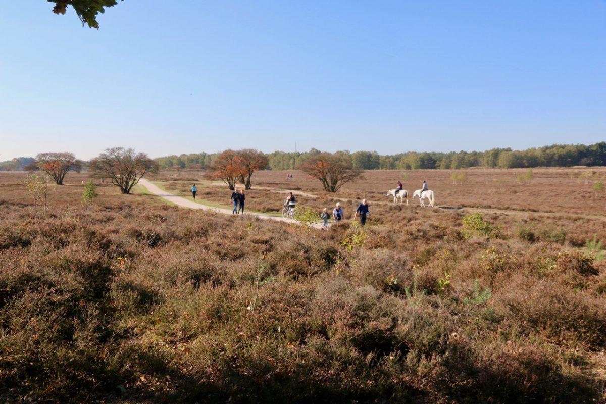 OV-fietsrondje Hilversum – buitenplaatsen, heide