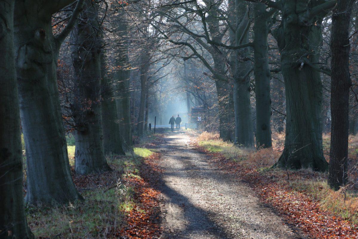 Hollandsche Rading – Uithof – Kromme Rijn